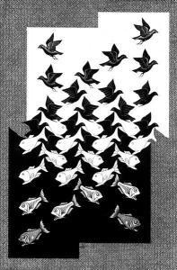 poissonsoiseaux